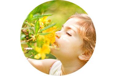Solution de purification pour mieux vivre au quotidien ses allergies